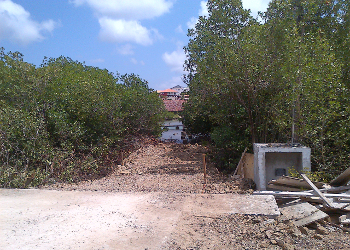 Clearcutting of mangroves to construct an illegal pier....